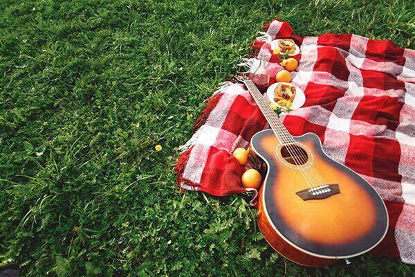 picnic-shibahu